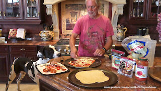 Great Dane Joins In Funny Comedy Of Errors Pizza Making Lesson
