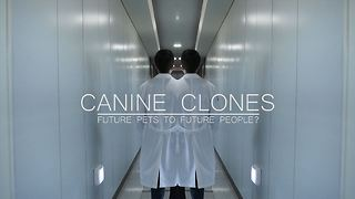 Canine Clones - Video