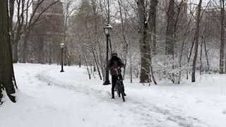 Snow Blankets New York's Central Park as Fourth Nor'easter Hits East Coast - Video