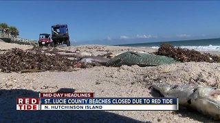 Red tide closes beaches in St. Lucie County