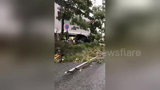 Debris litters Osaka streets after Typhoon Jebi ravages city