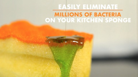 Forget about the germs on your kitchen sponge!