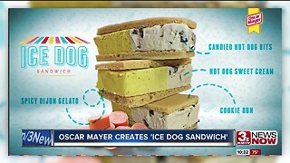 Ice Dog Sandwich
