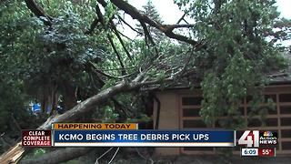 Tree debris pickup begins today in the northland - Video
