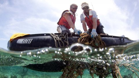 The Great Pacific Garbage Patch Has Even More Garbage Than We Thought