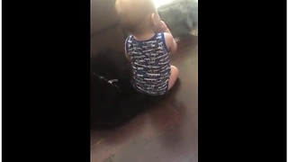 Baby chills out with doggy friends - Video