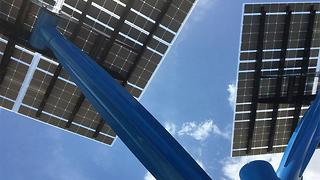 FPL introduces solar trees to South Florida - Video