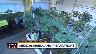 Will legal marijuana flourish or fold in 2018? - Video