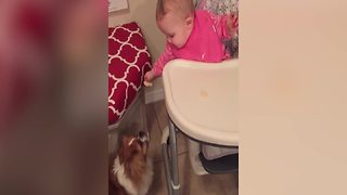 Adorable Baby Girl Shares Chips With Her Dog