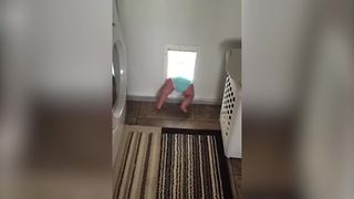 """Toddler Boy Tries To Go Through Doggy Door But Gets Stuck"""