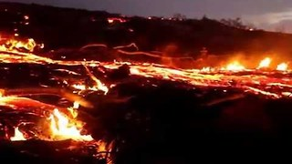 Hawaiian Volcano's Lava Flow Engulfs Forest - Video