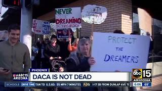 Judge rules against ending DACA program to protect Dreamers - Video