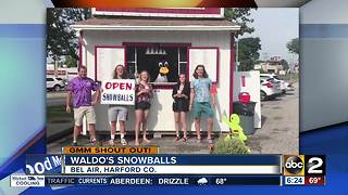 Good Morning Maryland from Waldo's Snowballs - Video