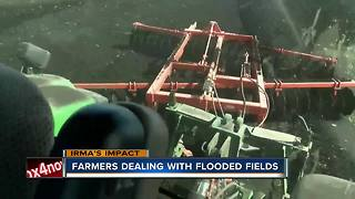 Farmers deal with flooded fields - Video