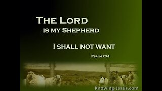 Psalm 23 - Pastor Greg Locke Wednesday night prayer and praise service