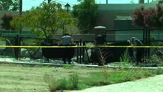 Bakersfield Police said a fetus was found at Mill Creek Park in Central Bakersfield Monday afternoon - Video