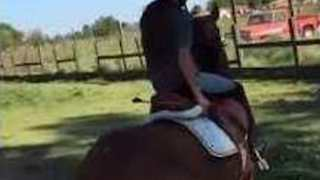Uncooperative Horse Takes Owner for a Ride