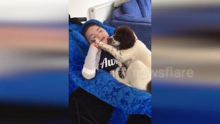 Heartwarming Moment UK Boy With Rare Condition Bonds With Puppy