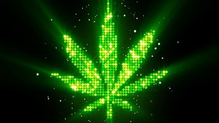 10 Curious Facts About Marijuana - Video