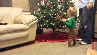 Determined Toddler Decorates the Christmas Tree - Video