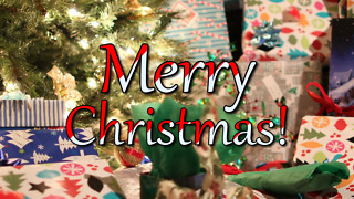 Merry Christmas - Greeting 2
