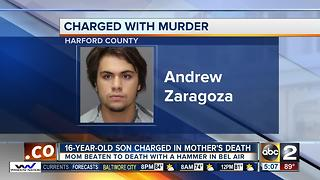 16-year-old son charged in mother's death