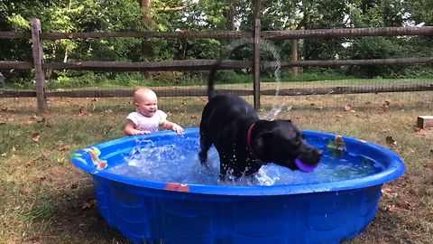 Puppy And Toddler Play Outside
