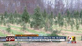 Nationwide tree shortage impacts the Tri-State - Video