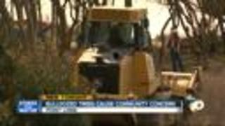 Bulldozed trees cause community concern - Video