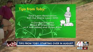 Tips from Toby: starting over in August - Video