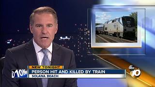 Person hit and killed by train - Video