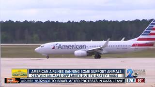 American Airlines no longer allowing certain emotional support animals on flights - Video