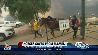 Reporter saves horses from CA fires - Video