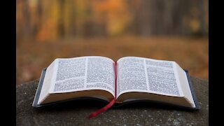 Catholic university students complain about having to read the Bible