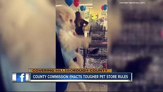 Board of County Commissioners votes to crack down on puppy mills - Video