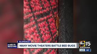 Valley movie theaters battle bed bugs - Video