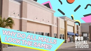 Why Do All Malls Look the Same?