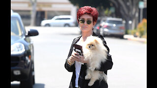 Sharon Osbourne steps up her security