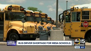 Drivers wanted: Mesa, other Valley districts starting school year with bus driver shortage