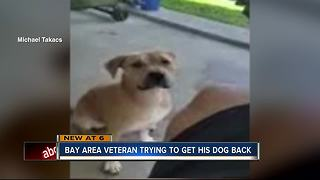 Military vet's dog adopted out to family who refuses to give it back - Video