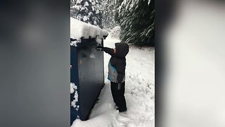 Toddler's Snowy Tumble - Video