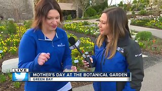 Mother's Day DIY with the Green Bay Botanical Garden