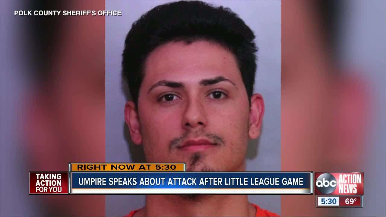 Lakeland man arrested for punching little league umpire