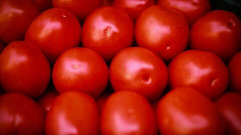 U.S. And Mexico Reach Draft Deal To End Tomato Tariff Disagreement