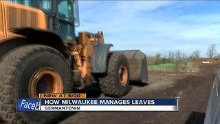 What does the City of Milwaukee do with your leaves each fall? - Video