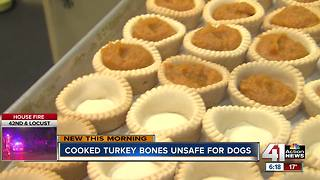 Why Thanksgiving leftovers aren't meant for your dog - Video