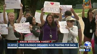 Five Colorado Dreamers in DC fighting for DACA - Video