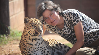 Leopard Lady Living With Wild Cats | BEAST BUDDIES - Video