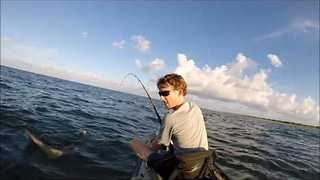Kayak Fishermen Catch and Release Lemon Shark - Video