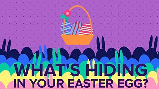 The bitter truth about your tasty Easter eggs - Video